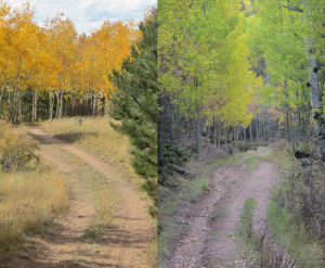 Spring and Fall Hiking Trails