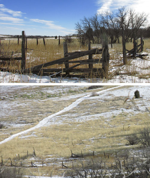Cattle Fence at the start of Cheyenne Canyon State Park