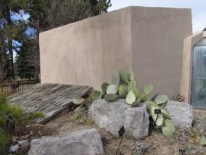 02-17-14-Cactus Adobe_1086