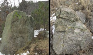 Rocky Creatures in Cheyenne Mountain State Park