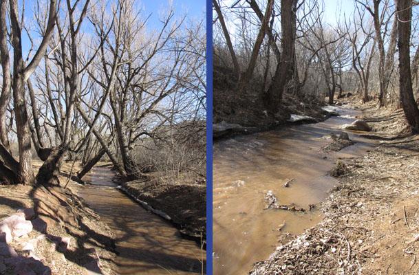 14-02-26_Creek Walk Fields_1525-17
