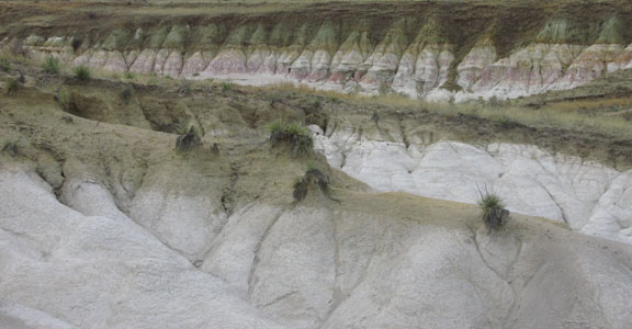 Yucca & White Formation at CO Paint Mines