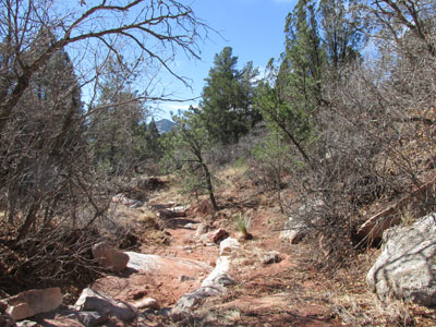Spring Canyon Creek Bed in Garden of the Gods