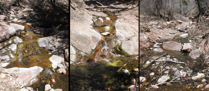Colorful Water in Williams Canyon