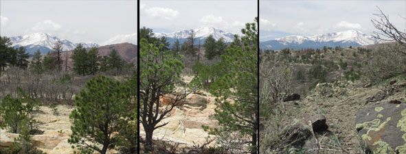 Views of Pikes Peak from Ute Valley Park