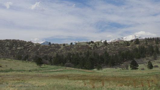 Grassy Trail in Ute Valley Park
